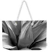 Century Plant I V Weekender Tote Bag