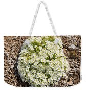 Cerastium Uniflorum Weekender Tote Bag