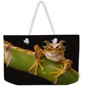 Chachi Tree Frog Ecuador Weekender Tote Bag