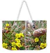 Chafer Beetle On Medusa Succulent In 3d Stereo Weekender Tote Bag