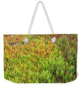 Changing Landscape I Weekender Tote Bag