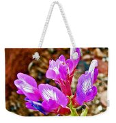 Chaparral Pea In Painted Desert Of Petrified Forest National Park-arizona  Weekender Tote Bag
