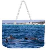 Chasing Dolphins  Weekender Tote Bag