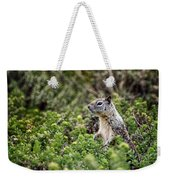 Checking Things Out Weekender Tote Bag