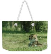 Cheetah At Attention Weekender Tote Bag