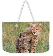 Cheetah Cub Looking Your Way Weekender Tote Bag