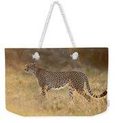Cheetah In Grassland Kenya Weekender Tote Bag