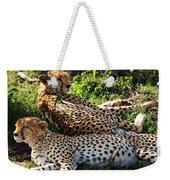 Cheetah - Masai Mara - Kenya Weekender Tote Bag