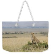 Cheetah Perched On A Mound Weekender Tote Bag