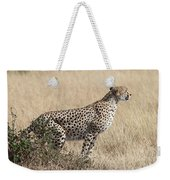 Cheetah Ready For The Off Weekender Tote Bag