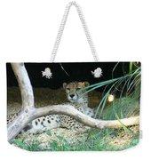 Cheetah Resting  Weekender Tote Bag