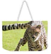 cheetah Running Portrait Weekender Tote Bag