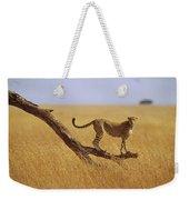Cheetah Standing On Dead Tree Weekender Tote Bag