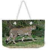 Cheetah Strolling Weekender Tote Bag
