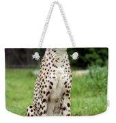 Cheetah's 01 Weekender Tote Bag