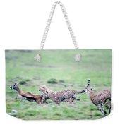 Cheetahs Acinonyx Jubatus Chasing Weekender Tote Bag