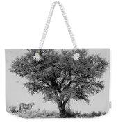 Cheetahs And A Tree Weekender Tote Bag