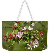 Cherry Blossom Time Two Weekender Tote Bag