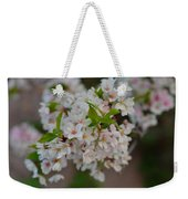 Cherry Blossoms 2013 - 068 Weekender Tote Bag