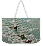 Cherry Blossoms 2013 - 090 Weekender Tote Bag