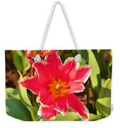 Cherry Blossoms 2013 - 093 Weekender Tote Bag