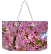 Cherry Blossoms 2013 - 096 Weekender Tote Bag