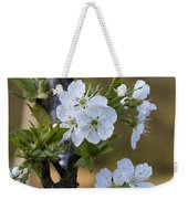 Cherry Blossoms In White Weekender Tote Bag