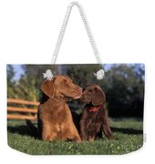 Chesapeake Bay Retrievers Weekender Tote Bag