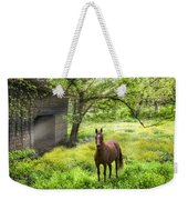 Chestnut Horse In A Sunny Meadow Weekender Tote Bag
