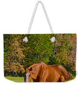 Chestnut Red Horse Weekender Tote Bag