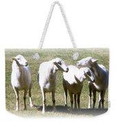 Cheviot Sheep 2 Weekender Tote Bag