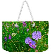 Chicory And Purple Vetch Along Rivier Du Nord Trail In Laurentians-quebec Weekender Tote Bag