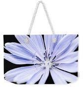 Chicory Flower Macro Weekender Tote Bag