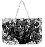 Chihuahua Desert Cactus Bw Weekender Tote Bag