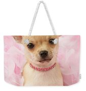 Chihuahua With Feather Boa Weekender Tote Bag by Greg Cuddiford