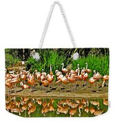 Chilean Flamingo Reflection In San Diego Zoo Safari Park In Escondido-california Weekender Tote Bag