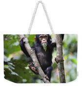 Chimpanzee Baby Eating A Leaf Tanzania Weekender Tote Bag
