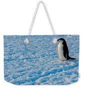 Chinstrap Penguin Weekender Tote Bag