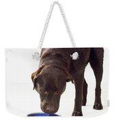 Chocolate Labrador Drinking Weekender Tote Bag