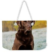Chocolate Labrador Retriever Weekender Tote Bag