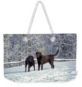 Chocolate Labrador Retrievers Weekender Tote Bag