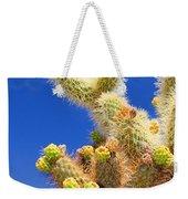 Cholla Cactus I By Diana Sainz Weekender Tote Bag