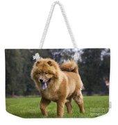 Chow Chow Dog Weekender Tote Bag