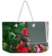 Chow Time At The Bird Feeder Weekender Tote Bag