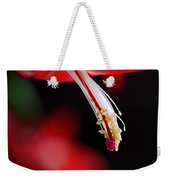 Christmas Cactus Pistil And Stamens Weekender Tote Bag by Rona Black