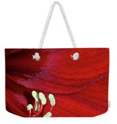 Christmas Red Weekender Tote Bag
