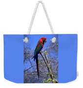 Cincy Parrot Weekender Tote Bag