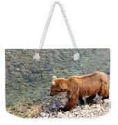 Cinnamon-colored Grizzly Bear By Moraine River In Katmai Np-ak  Weekender Tote Bag