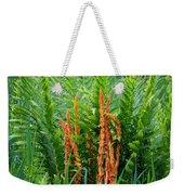 Cinnamon Fern Weekender Tote Bag