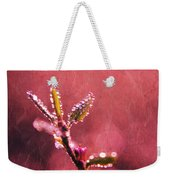 Circles From Nature - C33st04a Weekender Tote Bag